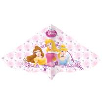 Gunther Disney Princess Flyer
