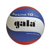 Gala Pro-Line 5581S10 Volleyball