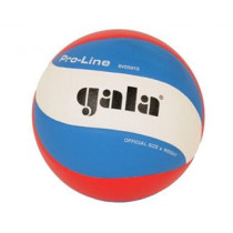 Gala Pro-line 5591S10 Volleyball